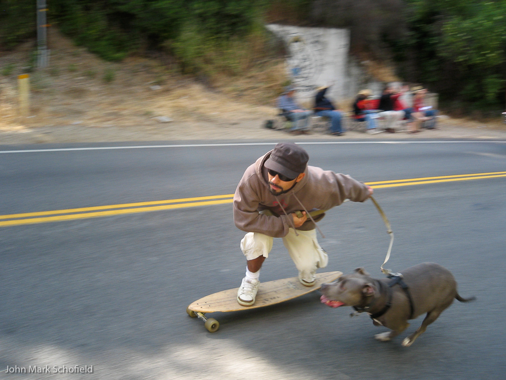 Dog-propelled skateboarding in the parade
